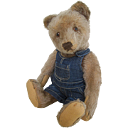 Steiff bear with button c.1950's
