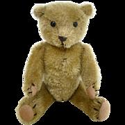Early Teddy Bear 9 inches