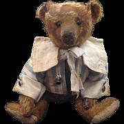 Cinnamon Steiff Bear c.1908 15 inches