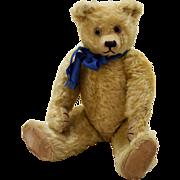1920's English Farnell Teddy Bear