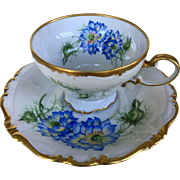 Rosenthal Pompadour Selb Germany Footed Gilded Cup & a Saucer