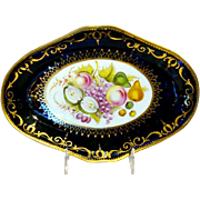 Antique English Coalport Porcelain Oval Botanical Dish