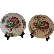 Pair of Lobed Faience Plates