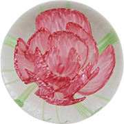 "Caithness ""May Rose"" Paperweight"