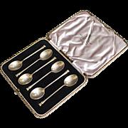 6 Demitasse Spoons in Case
