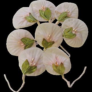 Eight Vintage Organdy Millinery Flowers