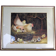 C1913 Antique Watercolour Chicken & Young Nesting