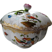 C1900 German Porcelain Box Dresden Birds & Insects
