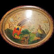 Charming Regency Peinte Tole Ware Tray Bird Decoration