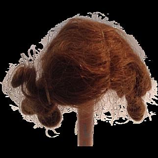 """Very Nice 7-1/2"""" Human Hair Doll Wig - 1920's"""