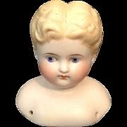 1880's Parian Boy Doll Shoulder Head