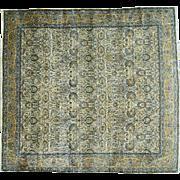 Squarish Oversize Antique Persian Kerman Mint Cond Rug Sh30267