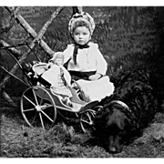 Children Animals Antique Toy Doll and Dolly Buggy TINTYPE 19th Century
