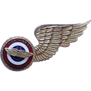Vintage Northwest Airlines US Airmail Wings