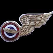 Vintage Northwest Airlines US Airmail Wings