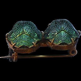 Victorian Green Beetles brooch - Actual Natural Beetles