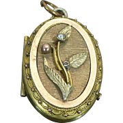 Victorian Aesthetic movement rolled gold Locket