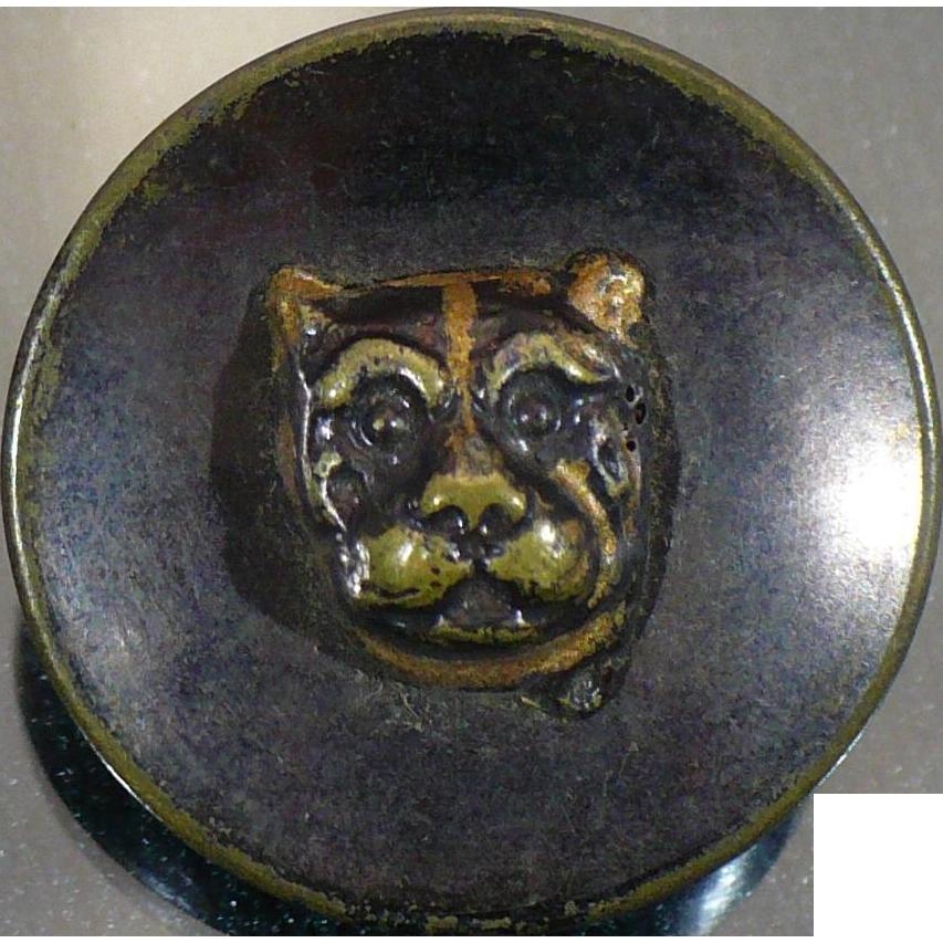 Antique Tiger - Lion relief button