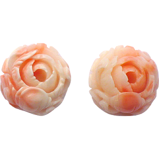 Carved Coral cabbage rose earrings 14 karat gold