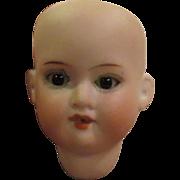 "6"" Circumference Antique German Bisque Mignonette Doll Head, AM 390"