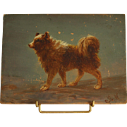 Circa 1880-1900: A charming Spitz dog portrait,little French oil on board monogrammed «  JM ».