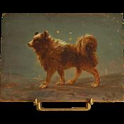 Circa 1880-1900: A charming Spitz dog portrait,little French oil on board monogrammed « JM».
