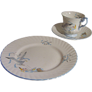 Queens -  Rosina China Co. Ltd Seagull Pattern - 2 Plates, Cup & Saucer