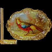 "Huge 18 3/4"" Limoges Antique Porcelain Platter - Bird with Floral Background - Heavy Gold Trim - Vibrant Colors"