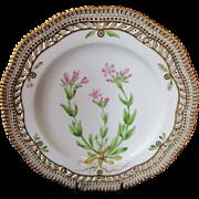"Royal Copenhagen Flora Danica Pierced 9"" Lunch Plate ~ Erythroea littoralis. Fr"