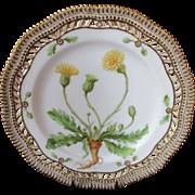 "Antique Royal Copenhagen Flora Danica Pierced 9"" Lunch Plate ~ Hypochoeris maculata c.1894"