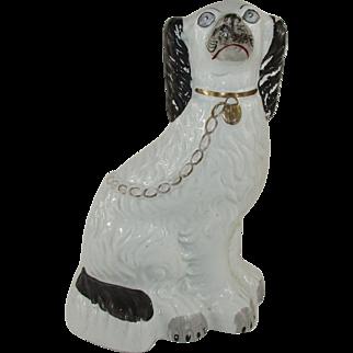 "Staffordshire King Spaniel Dog 10"" Black and White with Grey Eyes - c 1850"