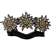 Vintage French Enameled Thonon-Les-Bains, France with Edelweiss Pin / Brooch c1920