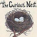 The Curious Nest