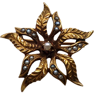 Beautiful Victorian Antique Cultured Freshwater Seed Pearl Starburst Pin w/ Etched Leaves