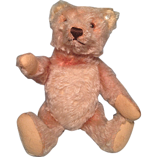 Rare Steiff Teddy With Turning Neck Mechanism 1955