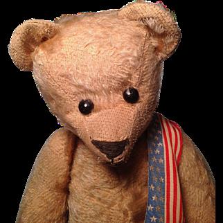 Early 17 inch Ideal Teddy Bear
