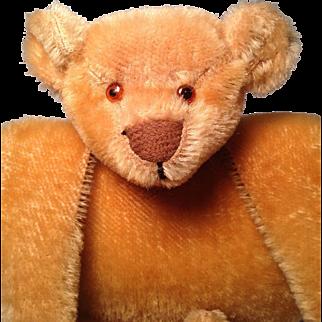Early American Teddy Bear Muff c1910