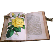Victorian Leather Bound Florist Book for 1856 &1857