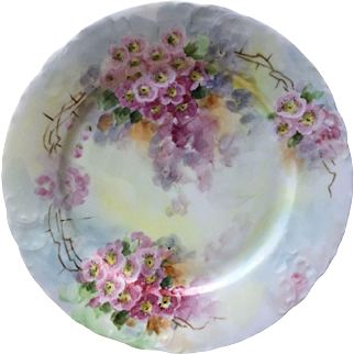 R.C TILLY  Hand Painted Porcelain plate