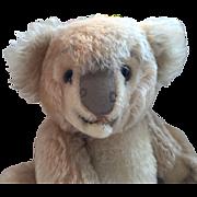 1950's Steiff Koala Bear Nice Larger Size