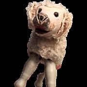 Rare c.1900's Schoenhut Glass Eyed Poodle Dog