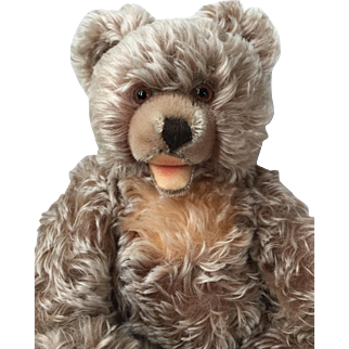Delightful Vintage 1950's Steiff Mohair Zotty Bear with Squeaker