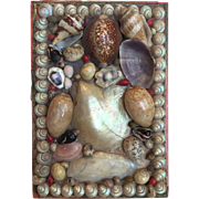 c.1880's Victorian Sailor's Valentine Shell Art Box