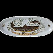 Large French Porcelain Fish Platter, Fish Server, Pike Plate, Transferware