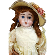 French Antique Bisque Head Doll