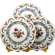 "Set of 12 Carl Schumann Rheinland 11"" Dinner Plates Dresden Floral Garlands"