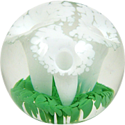 """Glass Paperweight White Calla Lily Flowers on Green Leaves in Clear Glass 3 1/4"""""""