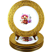Gold Encrusted Dinner Plates Dresden Flowers Hutschenreuther & Others Set of 6