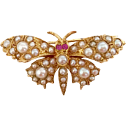 A Charming Victorian Butterfly In Seed Pearl and 18ct yellow gold