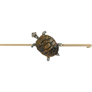 Slow and Steady Tigers Eye Tortoise Victorian Brooch